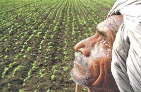 किसानों के हिस्से के 170 करोड़ रुपये डकार गए लोग, सरकार ने लिया बड़ा एक्शन