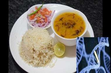 वैज्ञानिकों ने माना दाल-चावल जैसे भारतीय भोजन बीमारियों को मात देने में करते हैं मदद