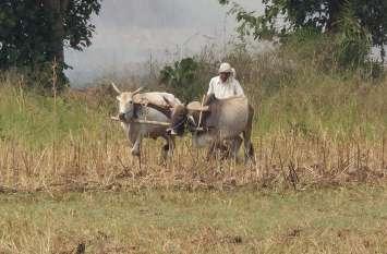 धान एवं मोटा अनाज खरीदी के लिए किसानों का हो रहा पंजीयन