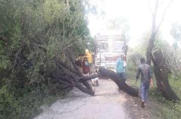 कहां तेज हवा और बारिश के दौरान गिरे पेड़, रास्ता हो गया बंद