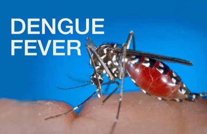 50 से ज्यादा लोगों को हुआ डेंगू, MP में कांगो बुखार का भी अलर्ट, डॉक्टरों की चिंता बढ़ी