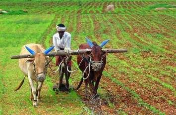किसानों के लिए बाधक बन रहा नया सॉफ्टवेयर, यह है खास वजह