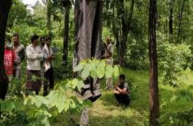 लकड़ी चुनने जंगल गए ग्रामीणों की पेड़ पर पड़ी नजर तो उड़ गए होश, फिर कुछ ही देर बाद पहुंच गई पुलिस
