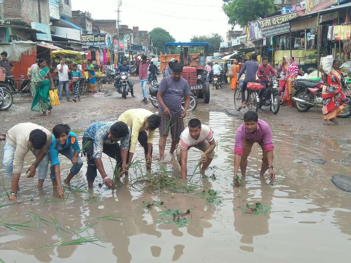 टूटी सड़क पर जलजमाव से राह चलना दूभर, गुस्साएं लोगों ने रोपाई कर जताया विरोध
