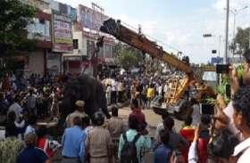 डेढ़ घंटे मौत से संघर्ष, जिंदगी से हारा हाथी, जिम्मेदारों ने मुंह फेरा, लोगों का हुजूम, जेब कटी तो लोगों ने की धुनाई