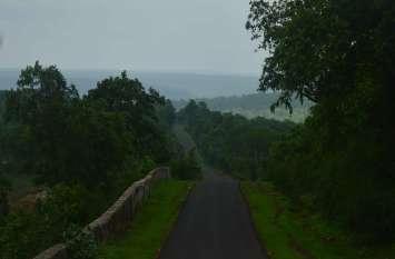 बारिश से निखरा जंगल का सौंदर्य,सड़कों के दोनों ओर फैली हरियाली कर रही आकर्षित