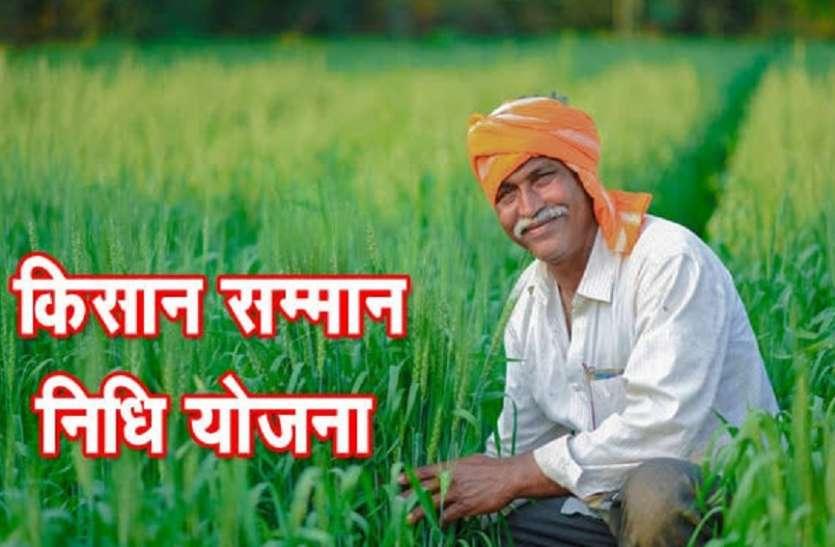 PM Samman Nidhi: Forest Cultivators Have Also Come Under The Ambit - पीएम  सम्मान निधि: जंगल में खेती करने वाले भी आ गए दायरे में   Patrika News