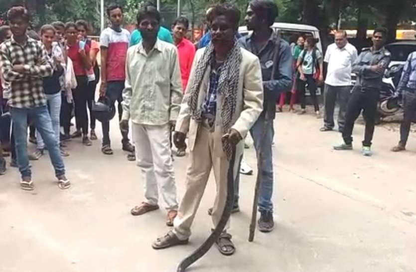 VIDEO : गर्ल्स कॉलेज में निकला घोड़ापछाड़ सांप, देखकर सहम गई छात्राएं