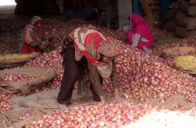 प्याज पर मोदी सरकार की बड़ी राहत, 24 रुपए प्रति किलो में बेचने के आदेश