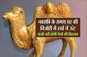 नवरात्रि के समय घर की तिजोरी में रखें ये ऊंट, कभी नहीं होगी पैसों की किल्लत