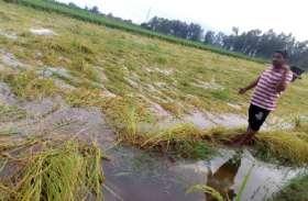 मौसम विभाग की बड़ी चेतावनी, अगले 5 दिनों तक और होगी तेज बारिश, इन लोगों का शुरू हो गया बुरा हाल