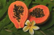 Papaya For Skin: मुंहासे दूर कर त्वचा को बेदाग बनाता है पपीता