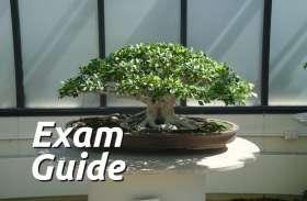Exam Guide: इन ऑनलाइन एग्जाम से चेक करें अपनी प्रतियोगिता परीक्षा की तैयारी