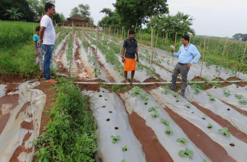 खेतों में नालियां बनाकर करें जल निकासी