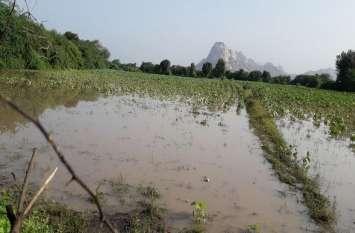 बेमौसम बारिश से फसलों में हुआ खराबा
