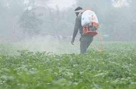 Weather Alert: सुबह धुंध और रात को ओस से बदला मौसम, इन तीन दिन बारिश के आसार