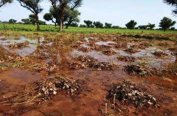 बारिश का बरपा कहर, किसानों की महेनत पर फिरा पानी
