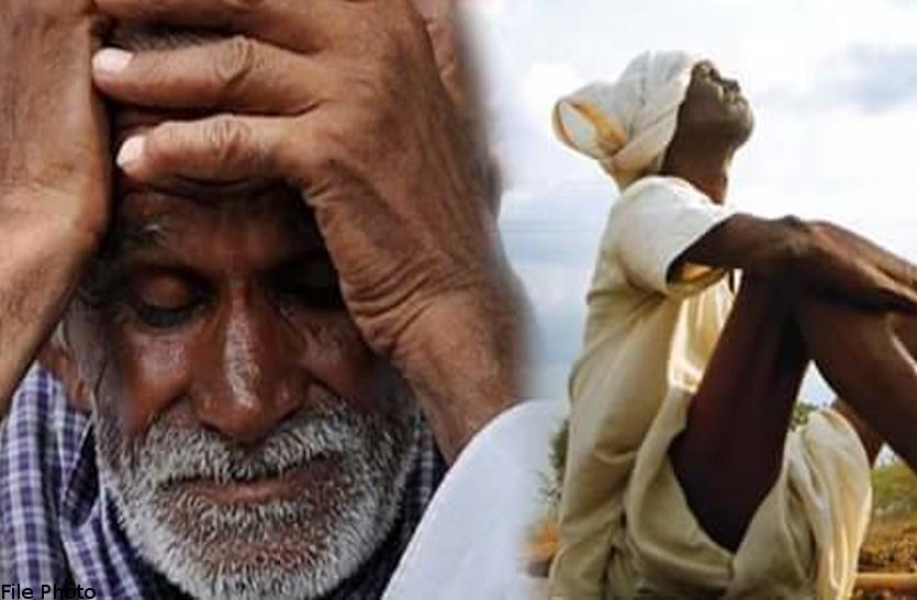 चक्रवाती तूफान तेलुगु राज्यों के किसानों पर पड़ा भारी, हुआ यह बड़ा नुकसान