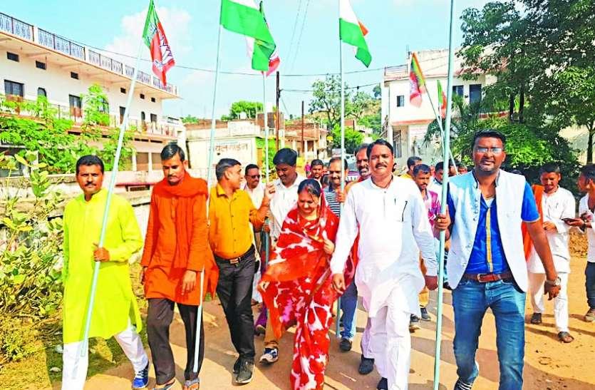 भाजपा की गांधी संकल्प यात्रा ग्राम ढड़ारी पहुंची