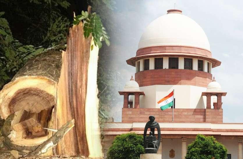 मुंबईः आरे में पेड़ों की कटाई पर सुप्रीम कोर्ट आगे आया, सोमवार को सुनवाई