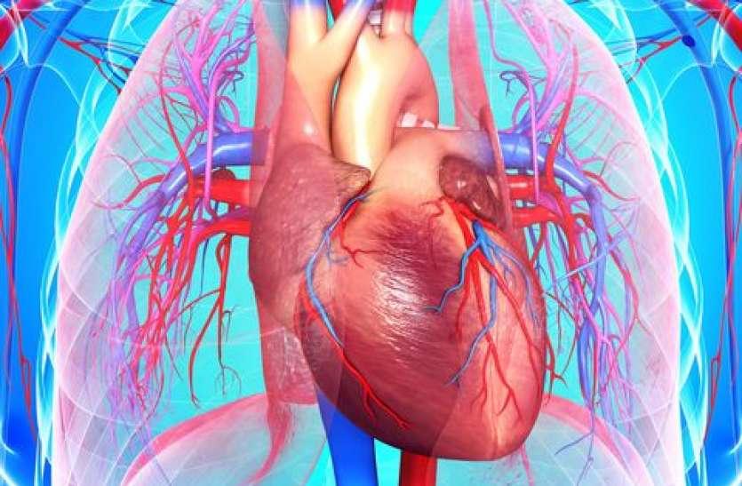 इन पांच देशी उपायों पर अमल करने से कभी नहीं होगी दिल की बीमारी
