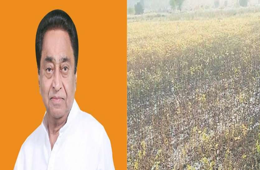 कमलनाथ जी इन किसानों को आपकी जरूरत है, नहीं मिली सहायता तो तबाह हो जाएंगे सैंकड़ो परिवार