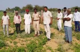 एक और टीम ने की पंजों के निशान की जांच, एक किसान की बकरी भी हुई गायब