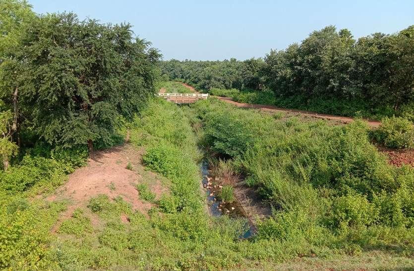जर्जर नहर ने एक बार फिर बढ़ाई किसानों की चिंता, इस सीजन गेहूं सिंचाई पर संशय