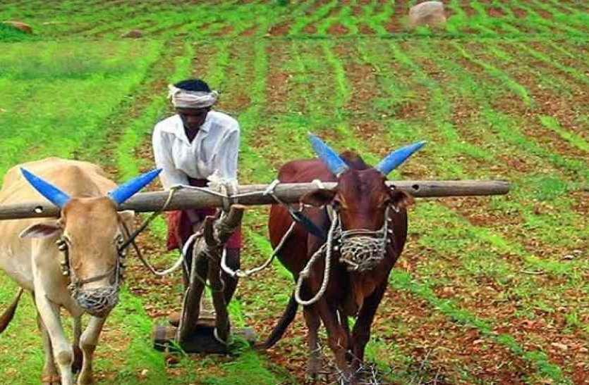 अब मुआवजे का 25 प्रतिशत ही होगा किसानों को भुगतान