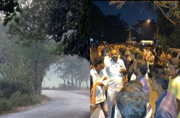 मुंबई की आरे कॉलोनी में प्रति मिनट 1 पेड़ कटा