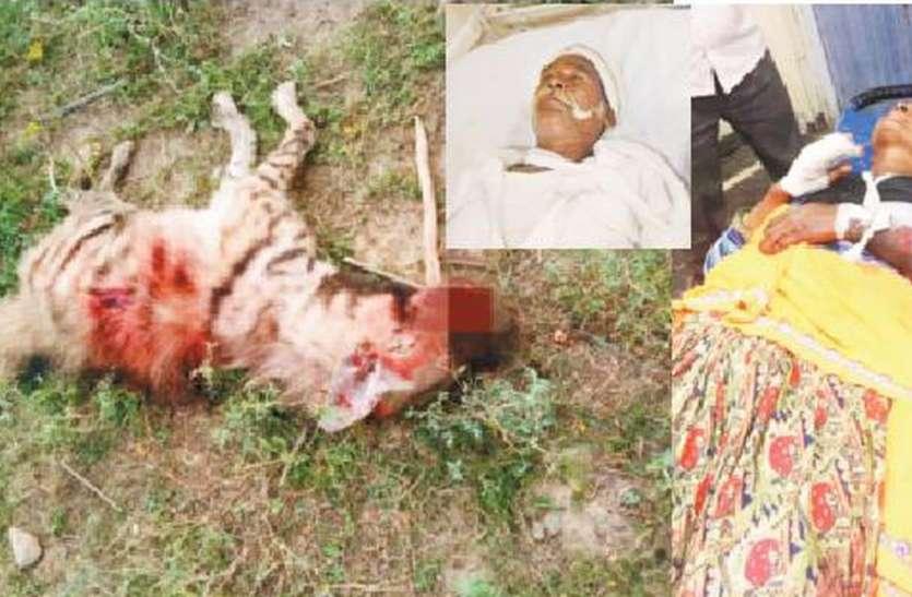 Attack of jarakh : जरख के हमले में तीन घायल, ग्रामीणों ने पीट पीटकर मार डाला