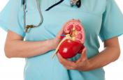 Kidney Disease: क्या है किडनी रोग से जुड़ी सच्चाई और भ्रम, जानिए यहां