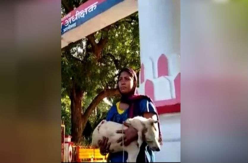 कुत्ते की हत्या का मामला दर्ज कराने एसएसपी कार्यालय पहुंची महिला फिर...