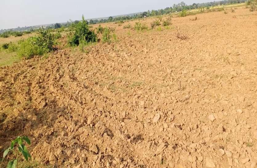 #Magnificent MP 2019 : प्रदेश के इस जिले जिले में बनेगा बड़ा जमीन बैंक, वन विभाग से वापस ली जाएगी जमीन