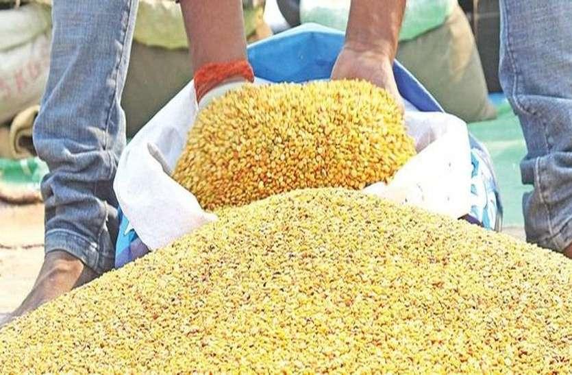 किसान समर्थन मूल्य से नीचे दाम पर बेच रहे है दलहन, फिर भी आयात कोटा बढ़ाने पर विचार