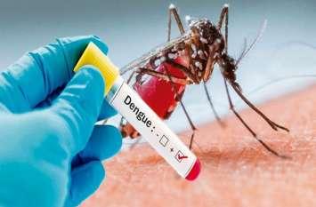 यूपी में फैला डेंगू का प्रकोप, आईएएस नवनीत सहगल समेत कई आए बीमारी की चपेट में, अब तक 400 से ज्यादा मरीजों की पुष्टि