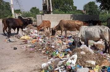 Nagarparishad Beawar : डिपो पड़ा है खाली, बाहर पसर रहा कचरा
