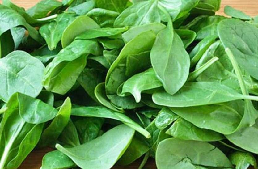 Side Effects Of Spinach Eating In More Quantity - Health Is Wealth: ज्यादा  पालक खाने से हो सकती हैं ये गंभीर बीमारियां, इन बातों का रखें ख्याल |  Patrika News