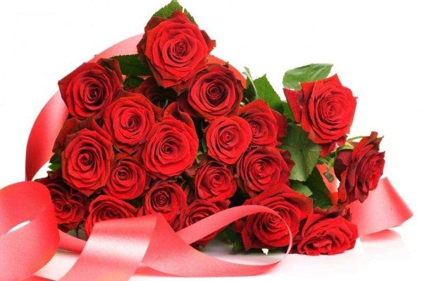 red_flower-3.jpeg