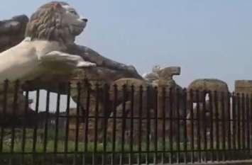 इटावा सफारी पार्क में तौकीर नामक शेर की मौत से मचा हड़कंप