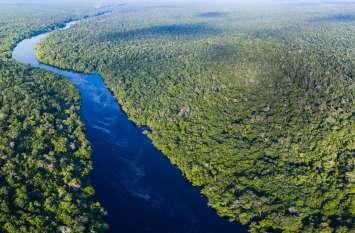क्या अमेजन के वर्षावन वास्तव में दुनिया की कुल ऑक्सीजन का 20 फीसदी देते हैं