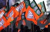 झारखंड विधानसभा चुनाव: BJP ने किया जीत का दावा, कहा- राजग का कोई मुकाबला नहीं