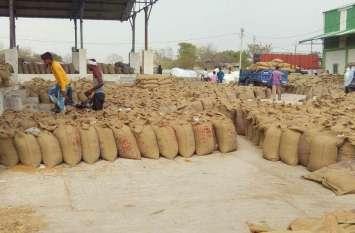 किसानों के लिए खुशखबर, एमएसपी पर होगी उपज खरीद
