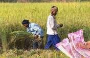 किसानों को सरकार ने दी राहत, अब किसान सम्मान निधि योजना और पीएम-किसान पेंशन योजना का इस तरह उठाएं लाभ