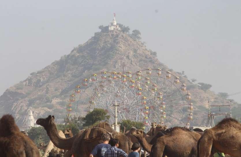 Pushkar fair 2019 : रेतीले धोरों पर बढऩे लगी रौनक
