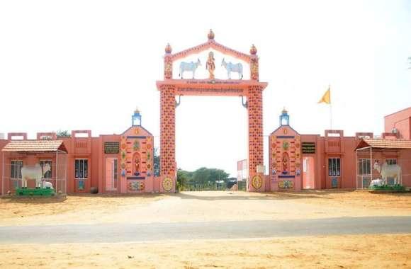 राजस्थान का एक गांव ऐसा जहां की गायें भी लखपति