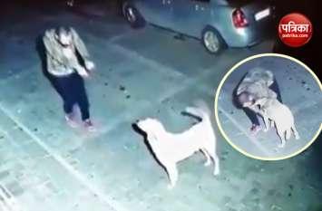शख्स का कुत्ते के साथ डांस करने का वीडियो वायरल, देख चेहरे पर आ जाएगी मुस्कान