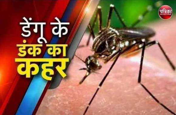 कोटा में कहर बरपा रहा डेंगू, एक ही दिन में 15 लोग शिकार, घरों में लार्वा मिलने पर काटे चालान