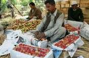 कश्मीरी सेबों पर लिखे मिले देश विरोधी नारे, जानें दिन भर की 10 बड़ी खबरें