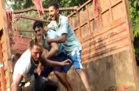 यूपी में गाय के बाद अब भैंसा ले जा रहे लोगों की पिटाई, जानवर भी कर लिया गया जब्त